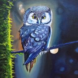 beautiful owl, 14 x 18 inch, sandhya kumari,14x18inch,canvas board,paintings,wildlife paintings,flower paintings,landscape paintings,nature paintings | scenery paintings,love paintings,baby paintings,children paintings,kids paintings,paintings for dining room,paintings for living room,paintings for bedroom,paintings for office,paintings for bathroom,paintings for kids room,paintings for hotel,paintings for kitchen,paintings for school,paintings for hospital,acrylic color,GAL0365935911