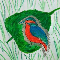 punjabi birds-king fisher, 12 x 9 inch, r meet,12x9inch,ivory sheet,paintings,nature paintings | scenery paintings,ink color,pastel color,GAL0488335930
