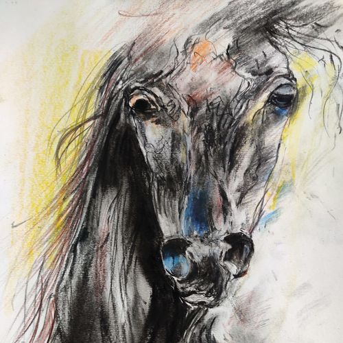 horse, 7 x 11 inch, shankhadeep  mondal,7x11inch,ivory sheet,drawings,abstract drawings,expressionism drawings,fine art drawings,impressionist drawings,modern drawings,paintings for dining room,paintings for living room,paintings for office,paintings for bathroom,paintings for kids room,paintings for hotel,paintings for kitchen,paintings for school,paintings for hospital,charcoal,pencil color,GAL01403036001