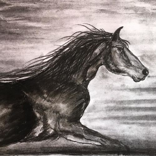 horse, 11 x 8 inch, shankhadeep  mondal,11x8inch,thick paper,drawings,modern drawings,paintings for dining room,paintings for living room,paintings for bedroom,paintings for office,paintings for kids room,paintings for hotel,paintings for kitchen,paintings for school,paintings for hospital,charcoal,GAL01403036003