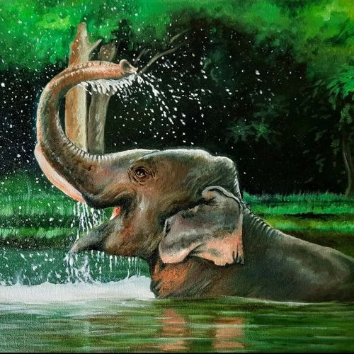 kerala komban, 16 x 12 inch, ratheesh kalapurakkal,16x12inch,canvas,wildlife paintings,paintings for dining room,paintings for living room,paintings for hotel,paintings for school,paintings for dining room,paintings for living room,paintings for hotel,paintings for school,fabric,oil color,GAL02448036026