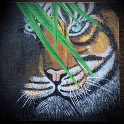 tiger painting , 8 x 8 inch, jyotsana  rao,8x8inch,canvas,paintings,wildlife paintings,acrylic color,GAL02446236133