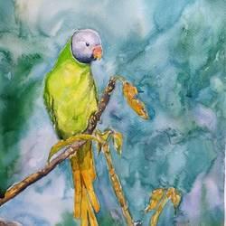 vibrant birds : slaty headed parakeet, 12 x 18 inch, vaishali singh,12x18inch,fabriano sheet,paintings,wildlife paintings,animal paintings,paintings for dining room,paintings for living room,paintings for bedroom,paintings for office,paintings for hotel,watercolor,GAL02492636393