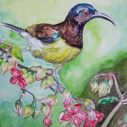 vibrant birds :, 12 x 18 inch, vaishali singh,12x18inch,fabriano sheet,paintings,wildlife paintings,animal paintings,paintings for dining room,paintings for living room,paintings for bedroom,paintings for office,paintings for bathroom,watercolor,GAL02492636397