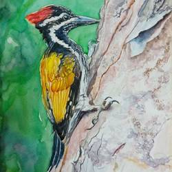 vibrant birds :, 12 x 18 inch, vaishali singh,12x18inch,fabriano sheet,paintings,wildlife paintings,animal paintings,paintings for dining room,paintings for bedroom,paintings for office,paintings for hotel,watercolor,GAL02492636399