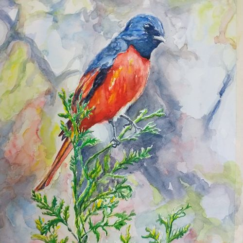 vibrant birds :, 12 x 18 inch, vaishali singh,12x18inch,fabriano sheet,paintings,wildlife paintings,animal paintings,paintings for dining room,paintings for living room,paintings for bedroom,paintings for office,paintings for hotel,watercolor,GAL02492636401