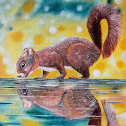 squirrel, 14 x 18 inch, suhas varpe,14x18inch,canvas board,paintings,wildlife paintings,photorealism paintings,photorealism,animal paintings,paintings for dining room,paintings for living room,paintings for bedroom,paintings for office,paintings for kitchen,paintings for school,oil color,GAL01991536842
