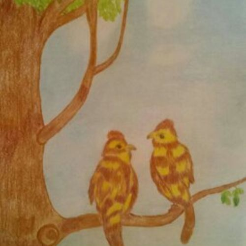 birds, 8 x 12 inch, geethanjali krishna,8x12inch,drawing paper,paintings,love paintings,pencil color,paper,GAL02511436859