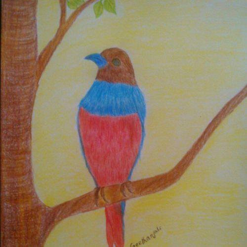 birds, 8 x 12 inch, geethanjali krishna,8x12inch,drawing paper,paintings,wildlife paintings,nature paintings | scenery paintings,paintings for dining room,paintings for living room,paintings for bedroom,pencil color,GAL02511436874