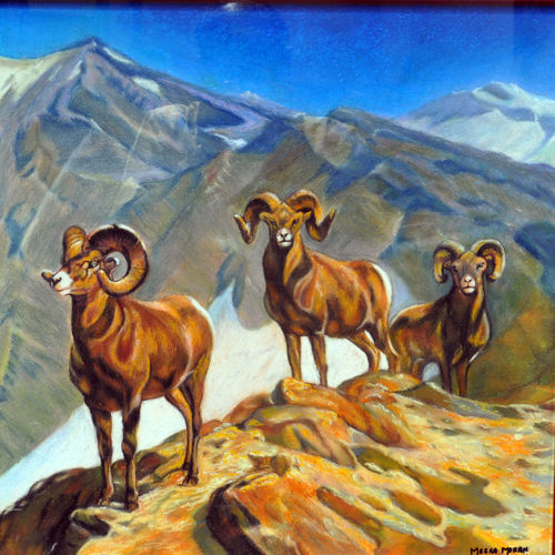 mountain goats, 24 x 18 inch, meera mohan,24x18inch,ivory sheet,paintings,wildlife paintings,landscape paintings,nature paintings | scenery paintings,photorealism paintings,photorealism,realism paintings,animal paintings,realistic paintings,paintings for dining room,paintings for living room,paintings for bedroom,paintings for office,paintings for hotel,paintings for school,paintings for hospital,pastel color,GAL02551136933