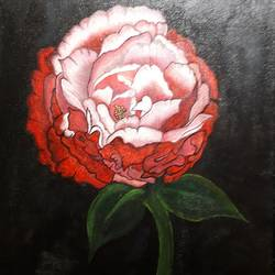 peony, 11 x 15 inch, varsha fulwani,11x15inch,canvas board,paintings,flower paintings,paintings for dining room,paintings for living room,paintings for bedroom,paintings for office,paintings for hotel,enamel color,ink color,mixed media,poster color,GAL02294937060