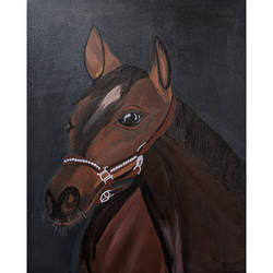 horse, 15 x 18 inch, tejashri dhoot,15x18inch,canvas,paintings,animal paintings,horse paintings,paintings for dining room,paintings for living room,paintings for bedroom,paintings for office,paintings for bathroom,paintings for kids room,paintings for hotel,paintings for kitchen,paintings for school,paintings for hospital,acrylic color,GAL02557237079