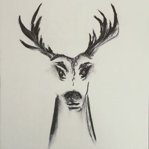 deer, 12 x 17 inch, arpana d,abstract drawings,paintings for living room,animal paintings,paper,charcoal,12x17inch,GAL09643719