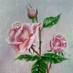 rose, 8 x 10 inch, suchitra polamuri,8x10inch,canvas,paintings,flower paintings,oil color,GAL02583637264