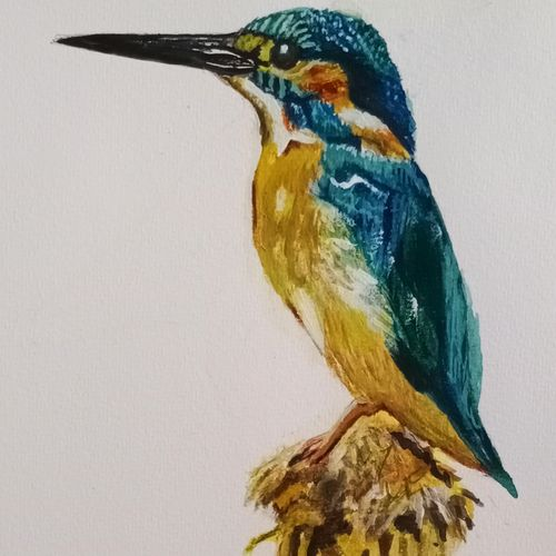 kingfisher, 11 x 8 inch, puja nag,11x8inch,brustro watercolor paper,art deco paintings,paintings for dining room,paintings for living room,paintings for bedroom,paintings for kids room,paintings for hotel,paintings for school,paintings for hospital,paintings for dining room,paintings for living room,paintings for bedroom,paintings for kids room,paintings for hotel,paintings for school,paintings for hospital,watercolor,paper,GAL091937327