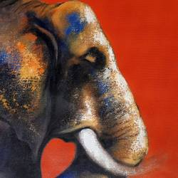 elephant, 13 x 20 inch, swastik jawalekar,13x20inch,canvas,paintings,animal paintings,acrylic color,GAL02600137464