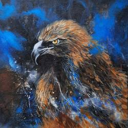 eagle, 12 x 12 inch, swastik jawalekar,12x12inch,canvas,paintings,wildlife paintings,figurative paintings,expressionism paintings,acrylic color,GAL02600137469