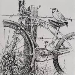 sparrow and bicycle, 8 x 12 inch, swastik jawalekar,8x12inch,thick paper,drawings,illustration drawings,ink color,GAL02600137503