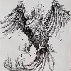 eagle, 8 x 12 inch, swastik jawalekar,8x12inch,thick paper,drawings,illustration drawings,ink color,GAL02600137505