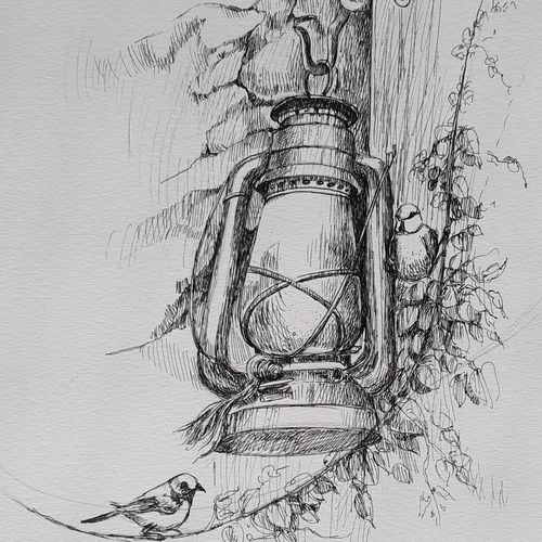 sparrow and lantern, 8 x 12 inch, swastik jawalekar,8x12inch,thick paper,drawings,illustration drawings,ink color,GAL02600137511