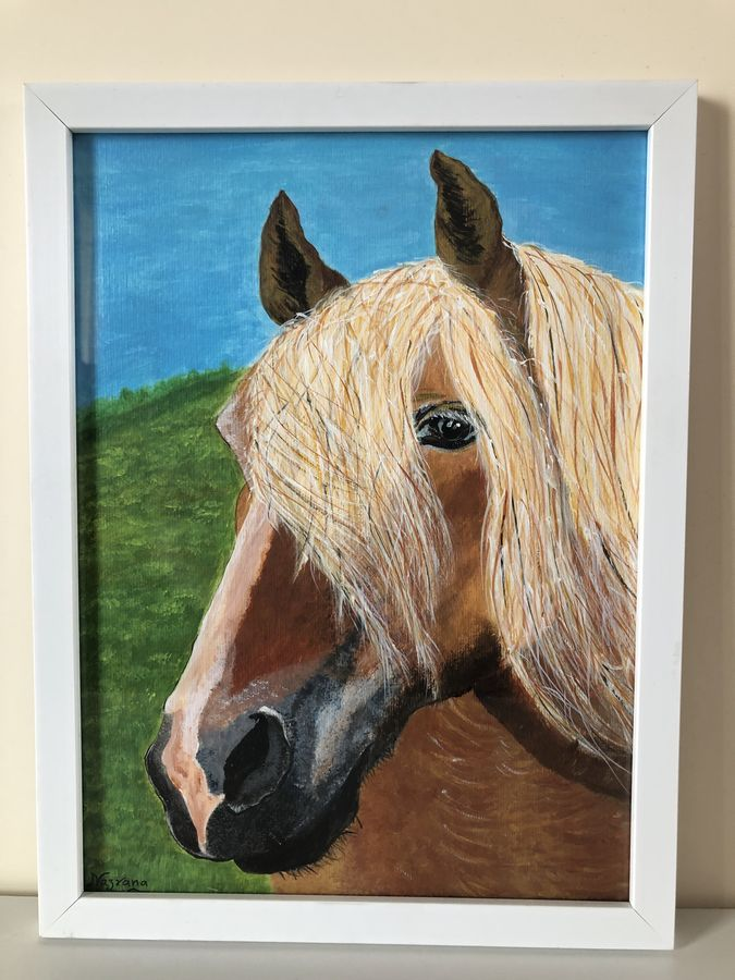 our noble friend , 9 x 12 inch, nazrana  khan ,9x12inch,thick paper,paintings,horse paintings,paintings for living room,paintings for office,paintings for kids room,paintings for hotel,paintings for school,acrylic color,paper,GAL02619337716