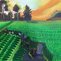 farm harvesting, 16 x 12 inch, manoj mule,16x12inch,canvas board,paintings,nature paintings | scenery paintings,acrylic color,GAL02624137763