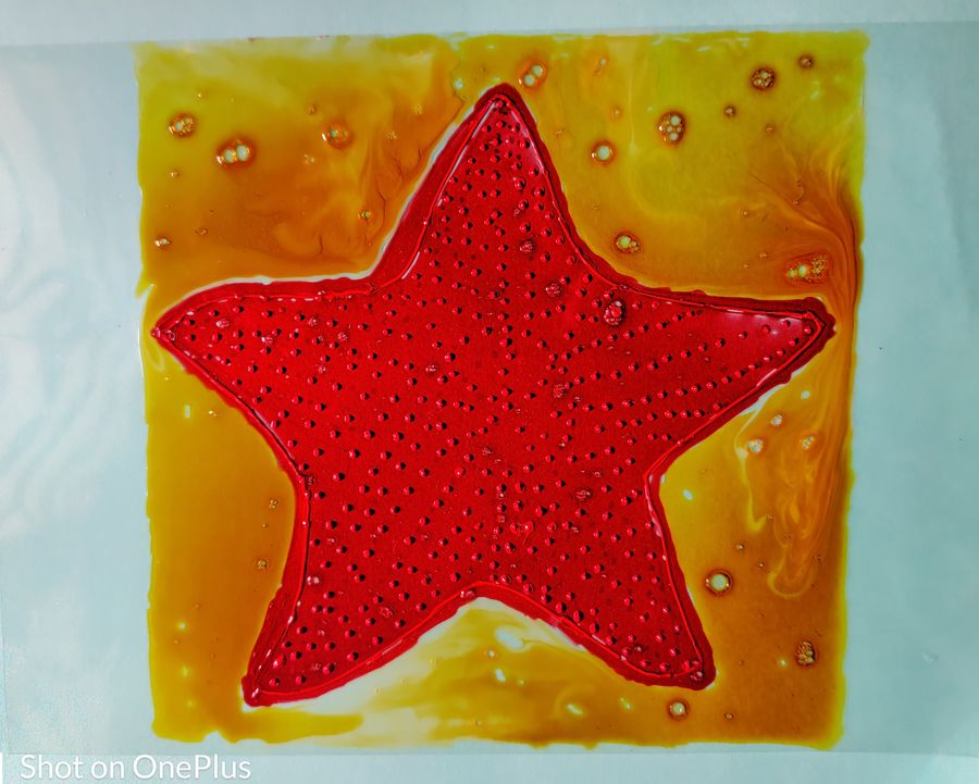 red cushion sea star fish, 210 x 297 inch, shilpa kashyap,210x297inch,ohp plastic sheets,paintings,nature paintings | scenery paintings,abstract expressionism paintings,illustration paintings,paintings for living room,paintings for bedroom,paintings for kids room,paintings for hotel,glass,GAL02483637787