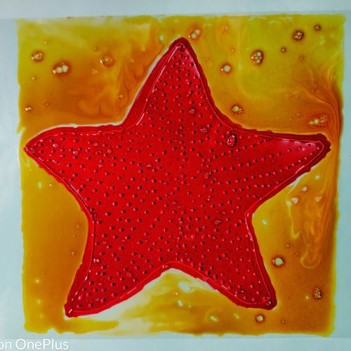red cushion sea star fish, 210 x 297 inch, shilpa kashyap,210x297inch,ohp plastic sheets,paintings,nature paintings   scenery paintings,abstract expressionism paintings,illustration paintings,paintings for living room,paintings for bedroom,paintings for kids room,paintings for hotel,glass,GAL02483637787