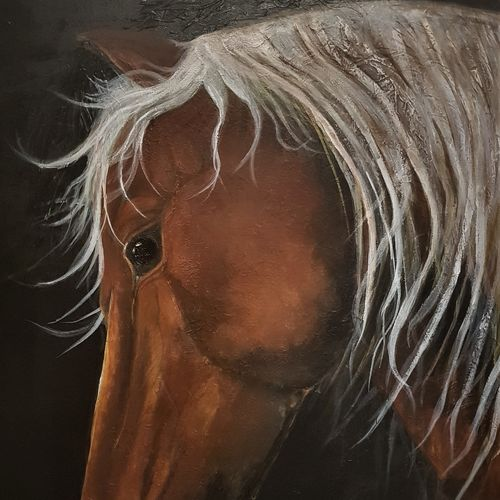 textured horse, 36 x 48 inch, san zac,36x48inch,canvas,paintings,wildlife paintings,figurative paintings,modern art paintings,still life paintings,nature paintings | scenery paintings,art deco paintings,animal paintings,realistic paintings,horse paintings,paintings for dining room,paintings for living room,paintings for bedroom,paintings for office,paintings for hotel,acrylic color,GAL02627737849
