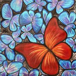 unique butterfly , 12 x 16 inch, bhuvana j,12x16inch,canvas,paintings,wildlife paintings,nature paintings | scenery paintings,art deco paintings,paintings for dining room,paintings for living room,paintings for bedroom,paintings for office,paintings for bathroom,paintings for kids room,paintings for hotel,paintings for kitchen,paintings for school,paintings for hospital,acrylic color,GAL02616437997