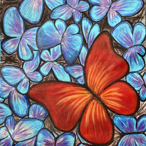unique butterfly , 12 x 16 inch, bhuvana j,12x16inch,canvas,paintings,wildlife paintings,nature paintings   scenery paintings,art deco paintings,paintings for dining room,paintings for living room,paintings for bedroom,paintings for office,paintings for bathroom,paintings for kids room,paintings for hotel,paintings for kitchen,paintings for school,paintings for hospital,acrylic color,GAL02616437997