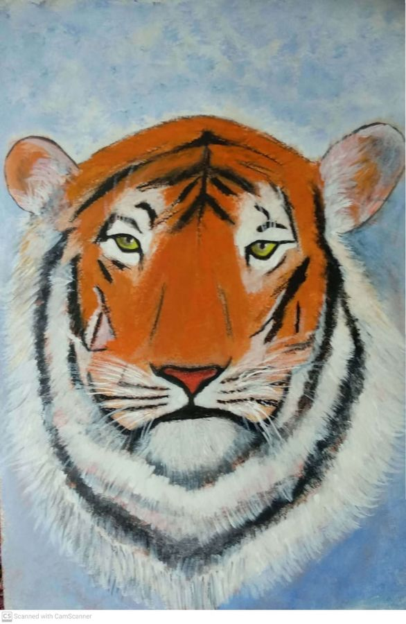 tiger face, 20 x 29 inch, sujit tikone,20x29inch,hardboard,paintings,wildlife paintings,paintings for dining room,paintings for living room,paintings for bedroom,paintings for office,paintings for hotel,acrylic color,pastel color,poster color,GAL02630738049