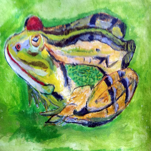 frog, 14 x 10 inch, suresh yadav,14x10inch,canvas,paintings,wildlife paintings,nature paintings | scenery paintings,baby paintings,children paintings,kids paintings,paintings for living room,paintings for bedroom,paintings for hotel,paintings for kitchen,paintings for school,paintings for hospital,acrylic color,GAL02620938154