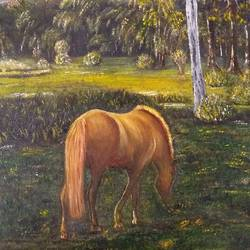 horse grazing in the garden., 14 x 20 inch, jugnu bakshi,14x20inch,canvas,paintings,horse paintings,fabric,GAL0969338175