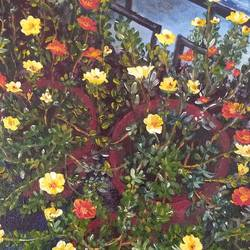portulacas in my balcony, 12 x 16 inch, jugnu bakshi,12x16inch,canvas,paintings,flower paintings,paintings for living room,fabric,GAL0969338193