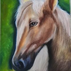 horse pastel art, 8 x 12 inch, ninad mantri,8x12inch,canson paper,horse paintings,paintings for living room,paintings for living room,pastel color,GAL02657838194