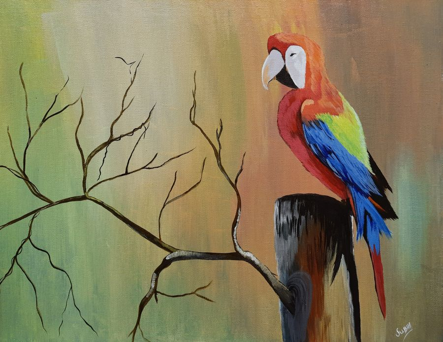 macao , 20 x 16 inch, subhi agarwal ,20x16inch,canvas,paintings,wildlife paintings,paintings for dining room,paintings for office,acrylic color,GAL02657938203