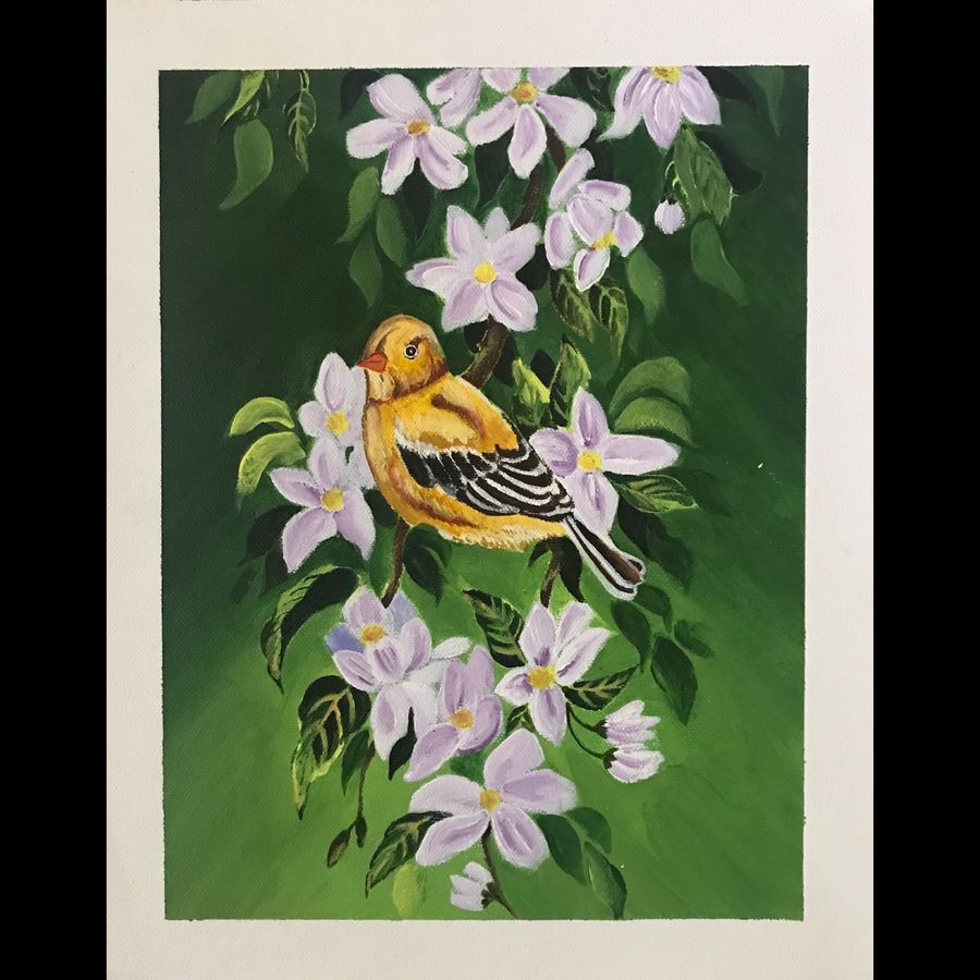 bird, 10 x 13 inch, neha harish,10x13inch,canvas,wildlife paintings,flower paintings,landscape paintings,nature paintings   scenery paintings,acrylic color,GAL02666738280