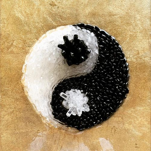 the yin and yang, 12 x 16 inch, mitali joseph,12x16inch,canvas board,modern art paintings,paintings for living room,paintings for hotel,paintings for living room,paintings for hotel,mixed media,GAL02645338305