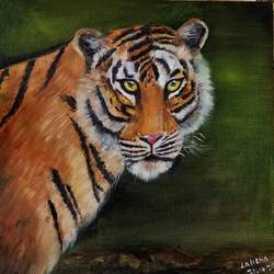 the royal bengal tiger, 12 x 12 inch, lalitha priyadharshini,12x12inch,canvas,paintings,wildlife paintings,paintings for dining room,paintings for living room,paintings for bedroom,paintings for office,paintings for bathroom,paintings for hotel,paintings for kitchen,paintings for dining room,paintings for living room,paintings for bedroom,paintings for office,paintings for bathroom,paintings for hotel,paintings for kitchen,mixed media,oil color,GAL02682138432