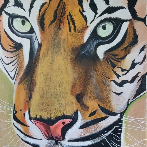 fierce tiger, 28 x 36 inch, ajay kanawade,28x36inch,canvas,paintings,wildlife paintings,paintings for dining room,paintings for living room,paintings for office,paintings for hotel,paintings for school,paintings for hospital,acrylic color,GAL02468938438