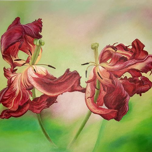 flame of flowers , 18 x 24 inch, irina  nagill ,18x24inch,canvas,paintings,flower paintings,realistic paintings,paintings for dining room,paintings for living room,paintings for bedroom,paintings for office,paintings for kids room,acrylic color,GAL02689138444