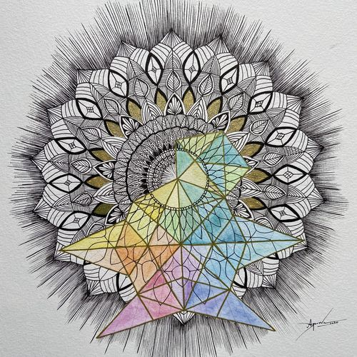 turtle mandala art, 9 x 12 inch, apoorva chowdary,9x12inch,canson paper,drawings,abstract drawings,conceptual drawings,fine art drawings,illustration drawings,modern drawings,pop art drawings,paintings for living room,paintings for bedroom,paintings for office,paintings for hotel,paintings for school,ink color,mixed media,pen color,watercolor,GAL02726338743