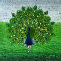 dancing peacock, 14 x 14 inch, ramya menon,14x14inch,thick paper,paintings,wildlife paintings,nature paintings | scenery paintings,art deco paintings,expressionism paintings,animal paintings,paintings for dining room,paintings for living room,paintings for bedroom,paintings for hotel,acrylic color,GAL02622838760