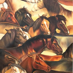 wild country horses , 29 x 36 inch, augustine devotta,29x36inch,canvas,horse paintings,oil color,GAL0695438880
