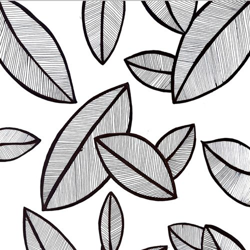 black and white leaves , 12 x 8 inch, yashica sharma,12x8inch,drawing paper,paintings for dining room,paintings for living room,paintings for bedroom,paintings for office,paintings for kids room,paintings for hotel,fine art drawings,modern drawings,paintings for dining room,paintings for living room,paintings for bedroom,paintings for office,paintings for kids room,paintings for hotel,ink color,pen color,paper,GAL02757839167