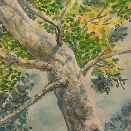 foliage and trunk , 6 x 10 inch, ajay anand,6x10inch,cartridge paper,paintings,landscape paintings,nature paintings | scenery paintings,paintings for dining room,paintings for living room,paintings for bedroom,paintings for bathroom,watercolor,GAL01783939240