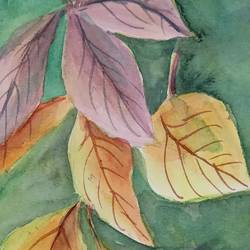 autumn leaves , 6 x 10 inch, ajay anand,6x10inch,cartridge paper,paintings,still life paintings,nature paintings | scenery paintings,realism paintings,paintings for living room,paintings for bedroom,paintings for office,paintings for bathroom,watercolor,GAL01783939243