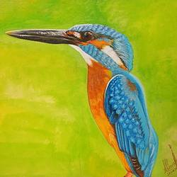kingfisher , 29 x 21 inch, shyam savale,29x21inch,thick paper,animal paintings,paintings for dining room,paintings for living room,paintings for office,paintings for hotel,paintings for dining room,paintings for living room,paintings for office,paintings for hotel,acrylic color,mixed media,paper,GAL02771239278