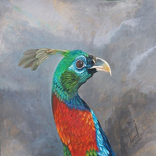 national bird of nepal , 29 x 21 inch, shyam savale,29x21inch,thick paper,paintings,animal paintings,paintings for dining room,paintings for living room,paintings for office,paintings for hotel,acrylic color,mixed media,GAL02771239281